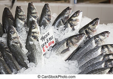 Fresh whole sea bass on ice