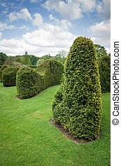 Clipped Hedge-Topiary-Trimmed hedge - Clipped or Trimmed...