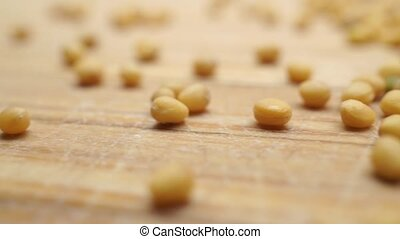 Macro shallow focus pan shot of scattered mustard seeds on...