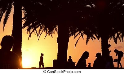 Silhouettes of people at park happy social scene -...