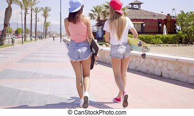 Young friends in shorts with skateboards - Rear view on pair...