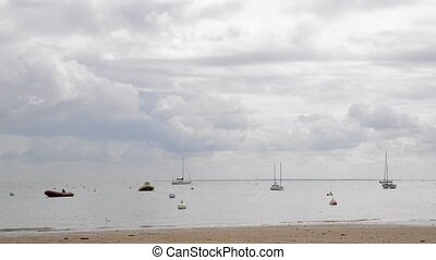 Moored boats in Noirmoutier island - Moored boats and buoys,...
