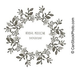 Herbal medicine label or frame, sketchy design with plants....