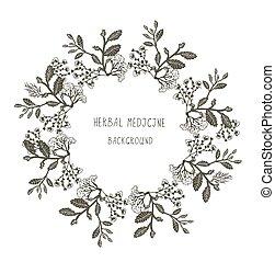 Herbal medicine label or frame, sketchy design with plants....
