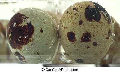 Macro video of boiling quail eggs clip