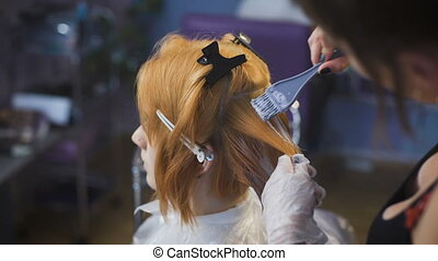 Professional hair color salon. An experienced stylist working with a client