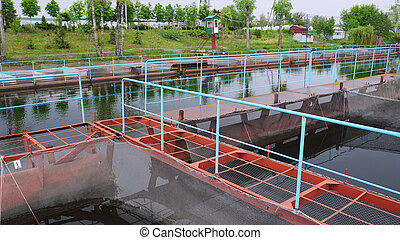 Pontoon sturgeon fish farm on a river - Pontoon sturgeon...