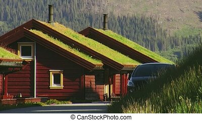 Small wooden houses with green grass on roof. Pipes. Summer sunny day. Car parked at home. Nobody