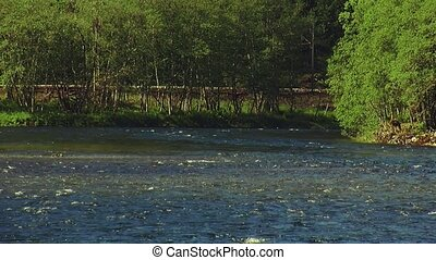 View of flowing river in different directions Summer sunny...