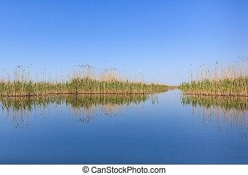 Danube Delta, Romania - beautiful landscape in the Danube...