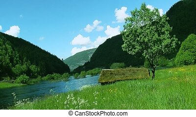 Panoramic view of green field with river and mountains covered by green forest in summer sunny day.