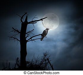 Full moon crow - Spooky crow perched on a naked tree in a...