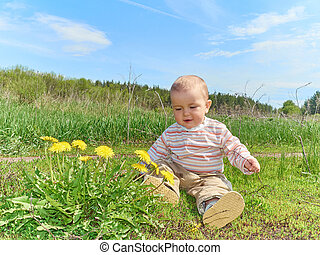 baby sitting on a green meadow with yellow flowers dandelions