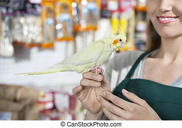 Smiling Saleswoman With Cockatiel In Store - Cropped image...