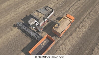 Process of unloading grain from combine to harvest in back...