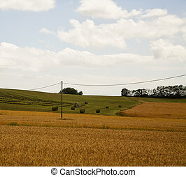 Fields with tractor