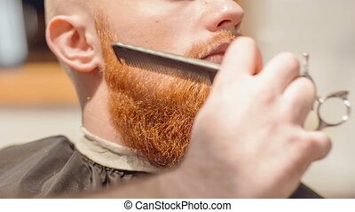 Professional barber cutting beard of his client - Magic...