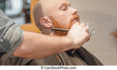 Professional barber cutting beard - Do it professionally...