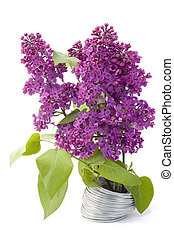 Branch of a lilac and wire