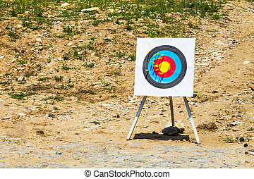 Outdoor target with bolts from a crossbow - Outdoor target...