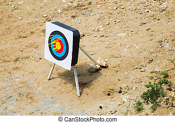 Crossbow bolts in a portable target - Crossbow bolts or...