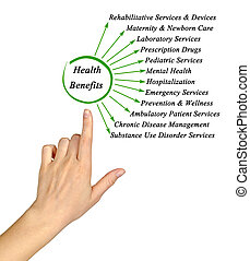 Diagram of Essential Health Benefits