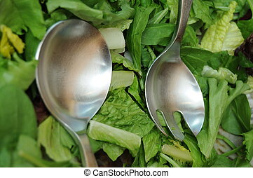 Tossed Salad - A variety of lettuce tossed to make a nice...