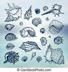 Collection of seashells. Hand drawn vector Illustration. Sea...