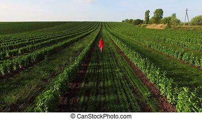 Aerial view of red woman walk on a green field in 4K