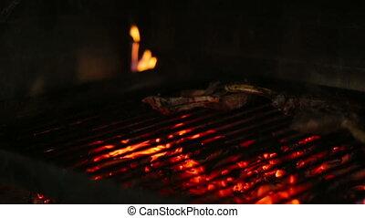 Grill, Frying Fresh Meat, Chicken Barbecue, Sausage, Kebab, Hamburger, BBQ at Picnic