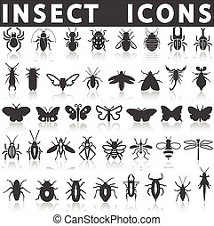 Insect icons - insect icons on a white background with a...