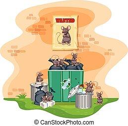 déchets, boîtes, entiers, de, déchets ménagers, et, Rats,