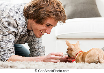 Smiling young man playing with a pet chihuahua crouching...