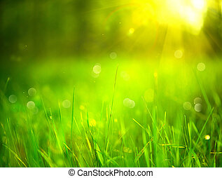 Nature blurred background. Green grass in spring park with sun flares backdrop