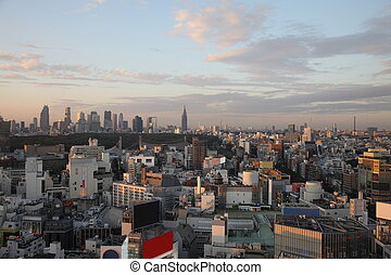 Illuminated Tokyo City in Japan at sunset from high above