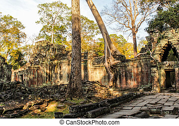 Angkor Thom - Ancient templt in cambodia