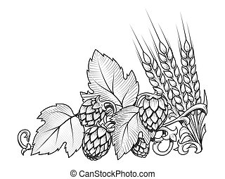 Hops and barley ornament vector illustration - Stylish hop...