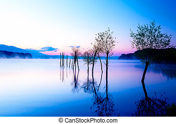 Beautiful landscape with a lake and mountains in the background and trees in the water. Blue and purple color tone. Slovakia Liptovska Mara, in region Liptov.