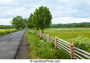 Country road with trees and fence - Beautiful view of...