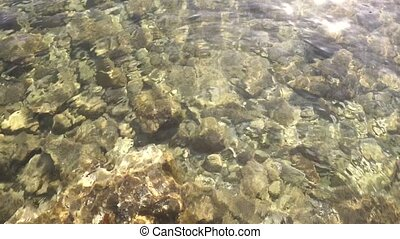 Clear sea water with pebbles on the bottom clip