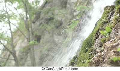 Water moving downward from a cliff in the forrest