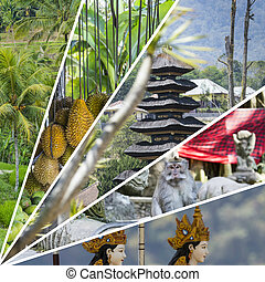 Collage of Bali (Indonesia) images - travel background (my photos)