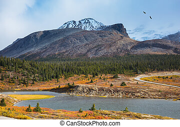 Icefields Parkway Road - Lake from the melting of huge...