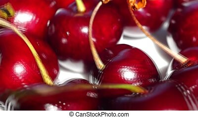 Panorama view of cherry berries - Panorama view of ripe and...