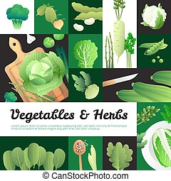 Organic Green Vegetables Banners Composition Poster -...