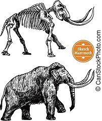 Sketch Hand Drawn Mammoth - Black and white sketch hand...