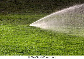 Sprinkler - Powerful sprinkle working to wet grass in summer