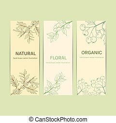 Collection herbal banner with blackthorn, sea buckthorn,...