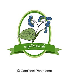 Handdrawn vector illustration nightshade Medicinal berryFor...