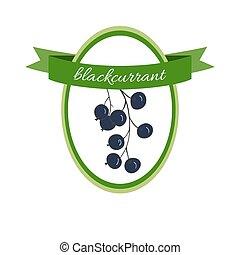 Handdrawn vector illustration blackcurrant. Medicinal...